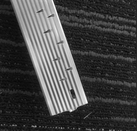W29 - Mặt sau