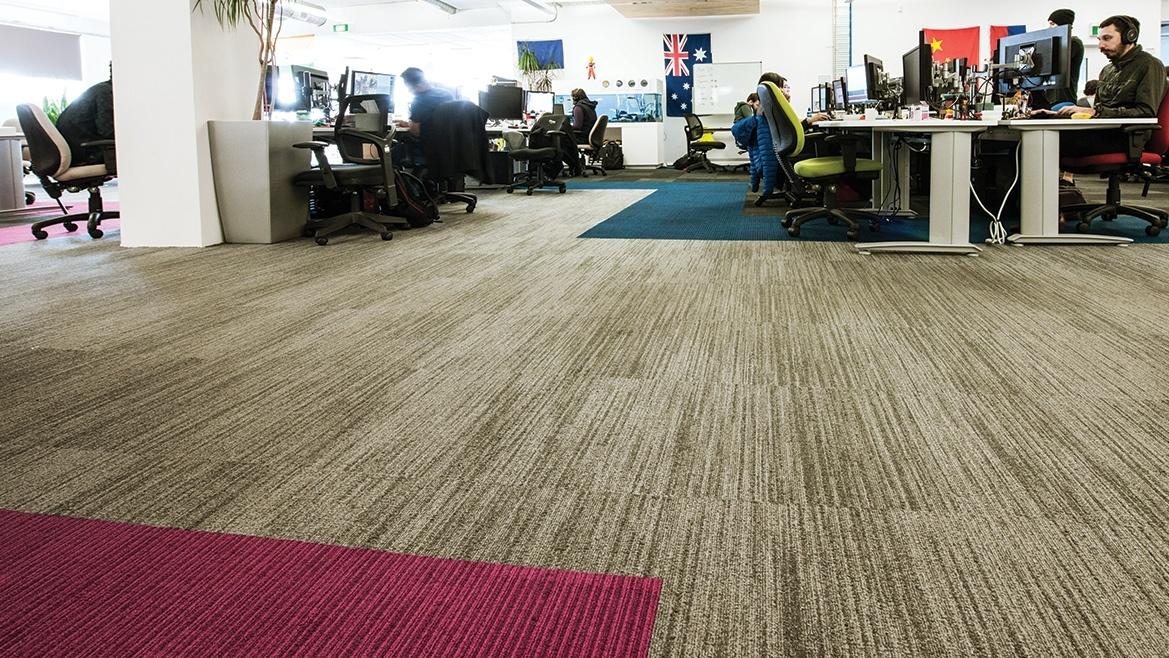 Thảm khu vực làm việc của nhân viên công nghệ