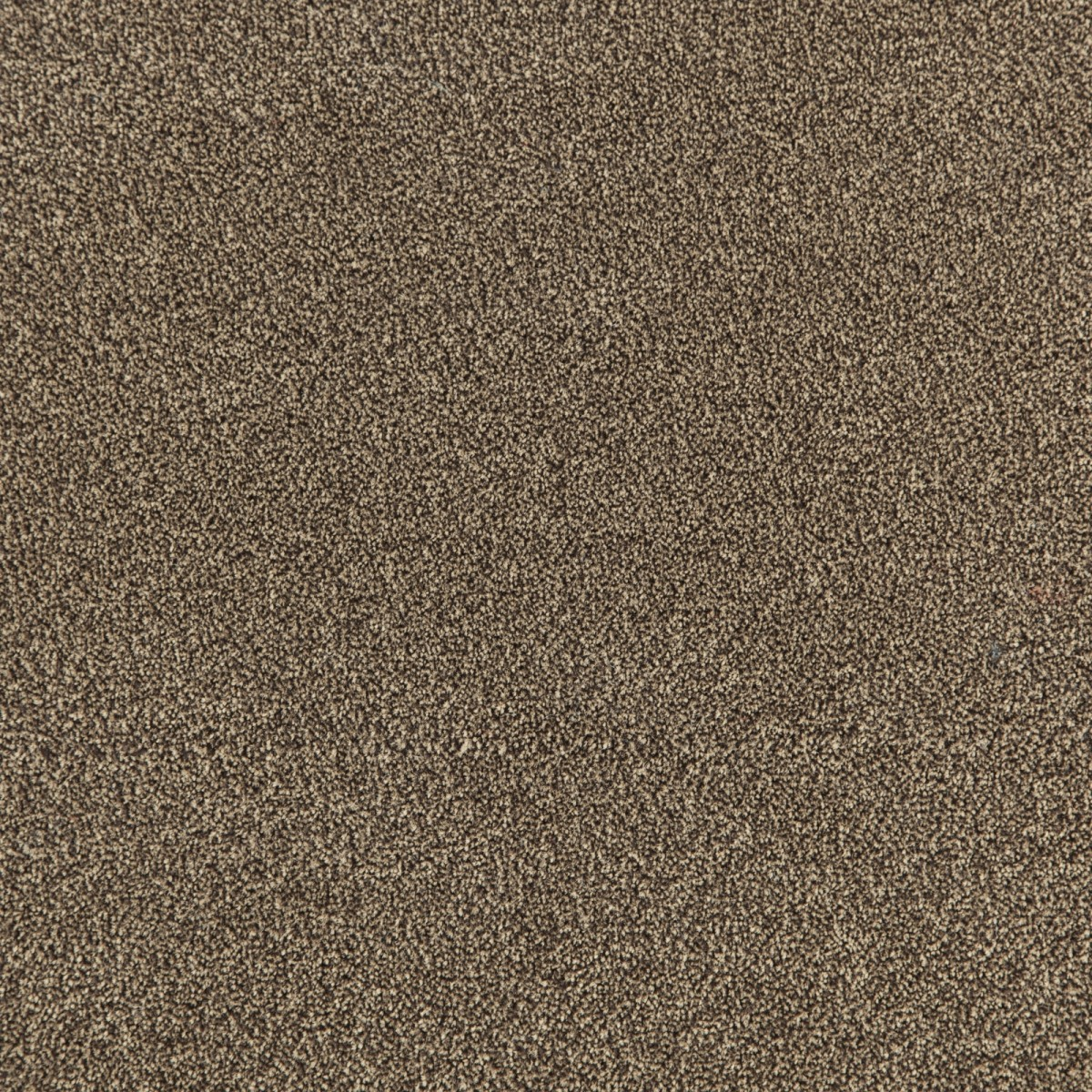 AV60230